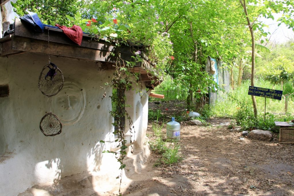 Eco-construction et toit végétalisé.