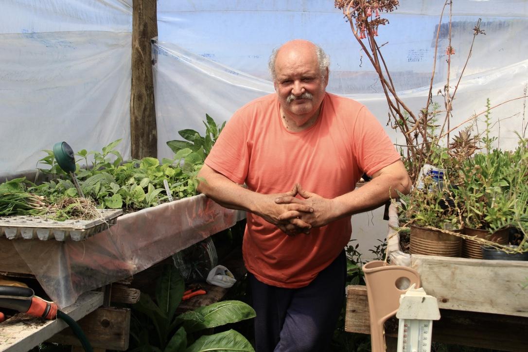 Dans sa petite serre, Miguel Balzo cultive notamment des plantes médicinales.