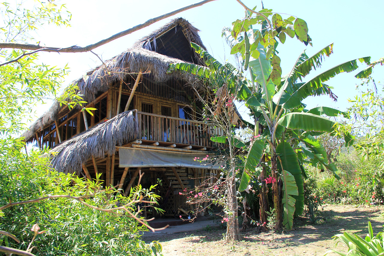 Equateur : du bambou pour tous les goûts